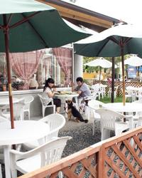 富士ミルクランド ペットと一緒にお食事
